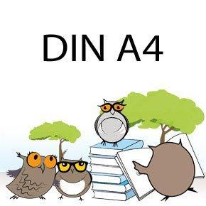 AMAZON-Bunter Stundenplan zum Ausdrucken. A4 oder A5.