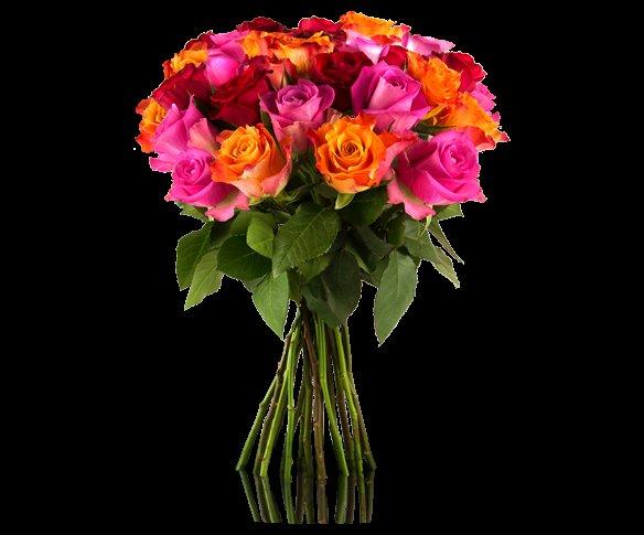 [Miflora] Blumenstrauss mit 28 bunten Rosen für 18,90 €uro inkl. Versand