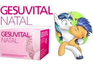 GESUVITAL NATAL & GESUVITAL MAN (Nahrungsgänzungsmittel für Frauen mit Kinderwunsch, sowie für Leistungsstarke Männer)