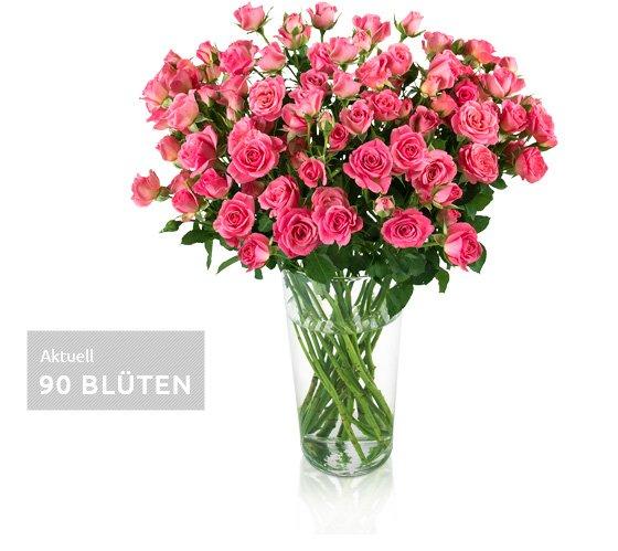 Rosenrallye bei Miflora: Aktuell 18 Rosen mit ~ 90 Blüten für 17,90€ inkl VSK