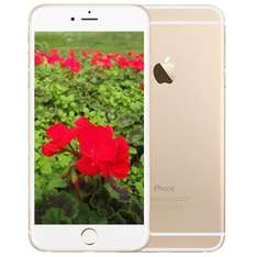 [Favorio] Apple iPhone 6+ Plus 16GB gold *refurbished*