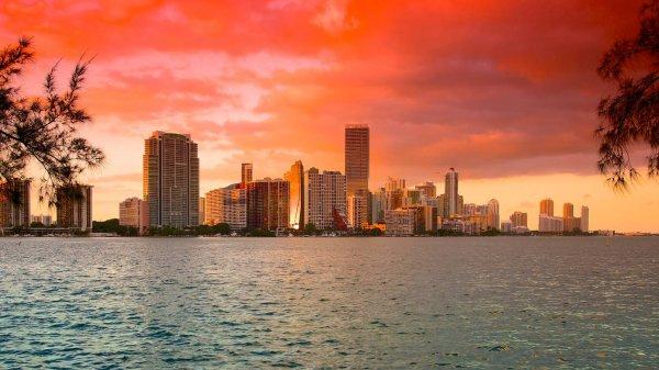 Flüge Brüssel-Miami-Brüssel im Februar/März 2016 ab 386€