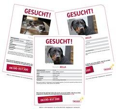 """Kostenlose Plakate zur Suche vermisster Tiere von """"Tasso e.V."""""""