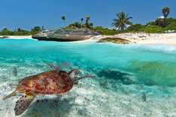 Flüge Non-Stop Köln - Cancun (Mexiko) zur besten Reisezeit (November / Dezember)