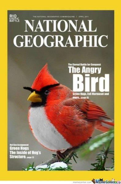 [Studenten] Semesterabo National Geographic