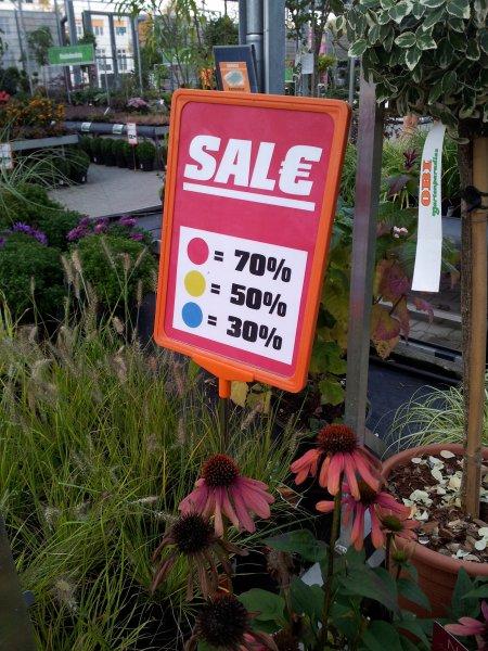 [OBI Berlin-Steglitz] SALE im Gartencenter bis 70% Rabatt