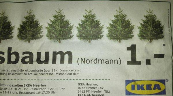 WEIHNACHTSBAUM (Nordmann) IKEA Heerlen NL