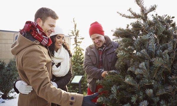 Gutschein für einen einen Weihnachtsbaum + Getränke + Würstchen @Groupon