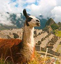Ab 320€ von Amsterdam nach Peru und zurück im Juni oder September bis November *UPDATE*