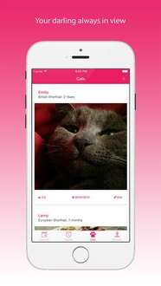 My Cat - Health & Care - Katzen Gesundheits App kostenlos