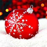 Für Kurzentschlossene: Wer liefert noch rechtzeitig bis Weihnachten?