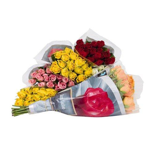 [Edeka / Kaufland] 14/15 lange Rosen für 2,99 € bzw. 28/30 lange Rosen für 5 € v. 11. 1. bis 16. 1. 2016