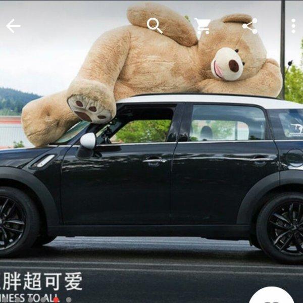 Überdimensionaler(260cm!) Teddybär für die ganze Familie!