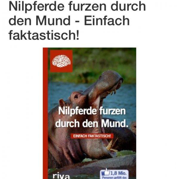 [Online Terrashop] Nilpferde furzen durch den Mund, Inventur Ausverkauf+kostenloser Versand