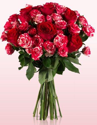 Miflora: Rosenkavalier - Blumenstrauß mit 14 Rosen für 16,10€ inkl VSK *UPDATE* 20% Gutscheincode