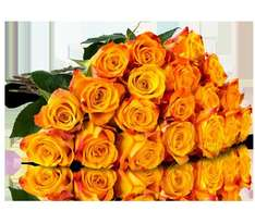 "(Miflora.de) Blumenarrangement ""Joyful Yellow"" mit 25 orange-gelben Rosen für 17,90 EUR"