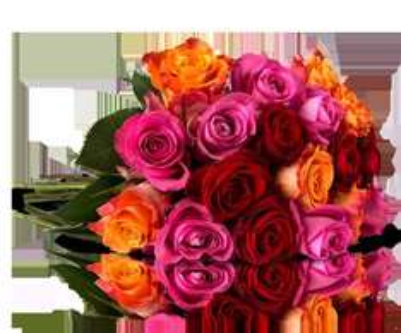 """(Miflora) Blumenarranement mit 25 bunten Rosen """"GLORIOUS RAINBOW"""" für 18,90 EUR"""