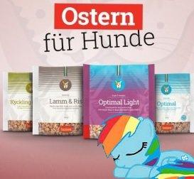 Osterspecial: Gratis Futter Kennenlernpaket für Hunde & Katzen (Husse)