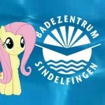 Kostenloser Eintritt für alle ins größte Sport- & Familienbad in der Region Stuttgart (Badezentrum Sindelfingen / So. 13.03.16)