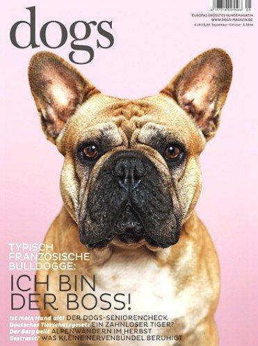 """Jahresabo (6 Ausgaben) """"dogs"""" für eff. 8,00€ durch 25,00€ Amazon-Gutschein"""