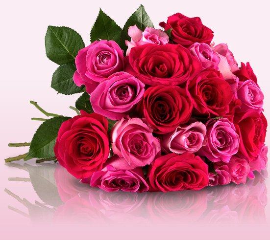 """""""Incredible Pink"""" - Blumenstrauße mit 25 pinken Rosen für 18,90€ @ Miflora"""