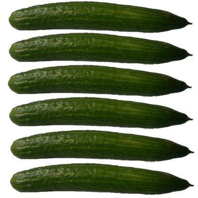 [REAL] Salatgurke (aus D?)