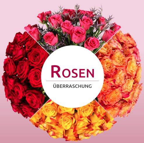 Crazy Thursday bei Miflora - Rosen-Überraschung für 16,06€ - 1111 Sträuße verfügbar