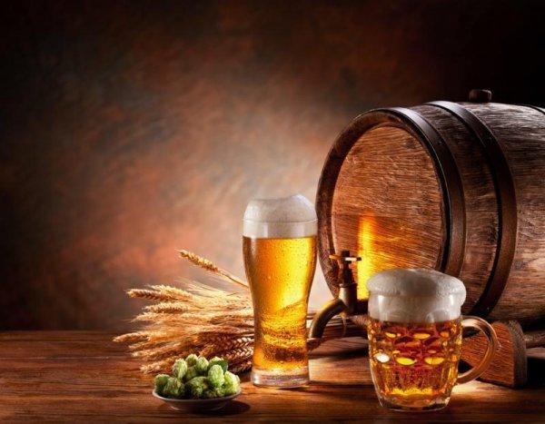 Bier Brauer Bier selbst brauen 150seitiges Ebook mit Techniken und Rezepten.