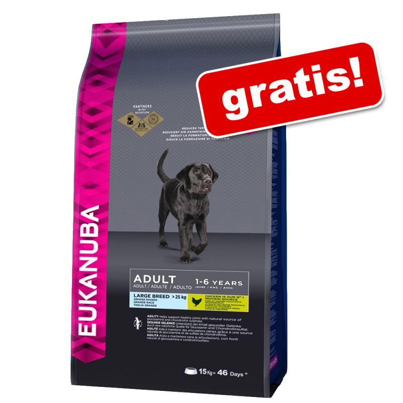3 KG Hundefutter Eukanuba Adult Large Breed Huhn gratis testen
