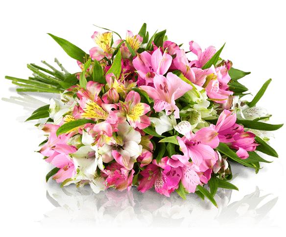 Blumenstrauß mit bunten Alstromerien für 16,90€bei Miflora