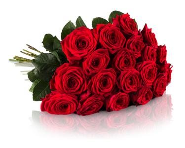 Noch bis morgen 17 Uhr: Der Klassiker: 20 langstielige (50cm) Red Naomi Rosen für 18,90€ inkl. VSK bei [MiFlora]