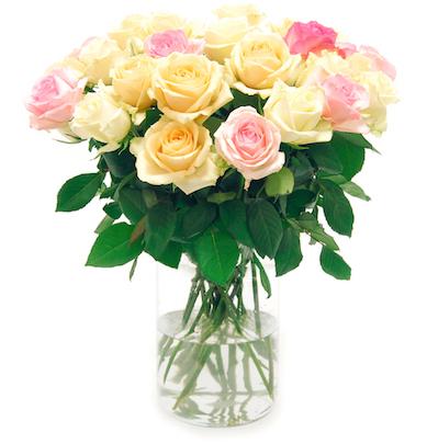 """Rosenstrauß """"Pastella"""" mit 21 Rosen für nur noch 15€ bei [Bloompost]"""