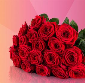 20 Red Naomi Rosen (ca. 50cm) für 18,90€bei Miflora