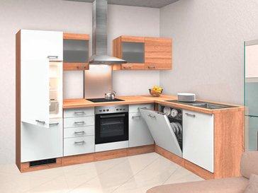 Winkelküche mit allen Elektrogeräten
