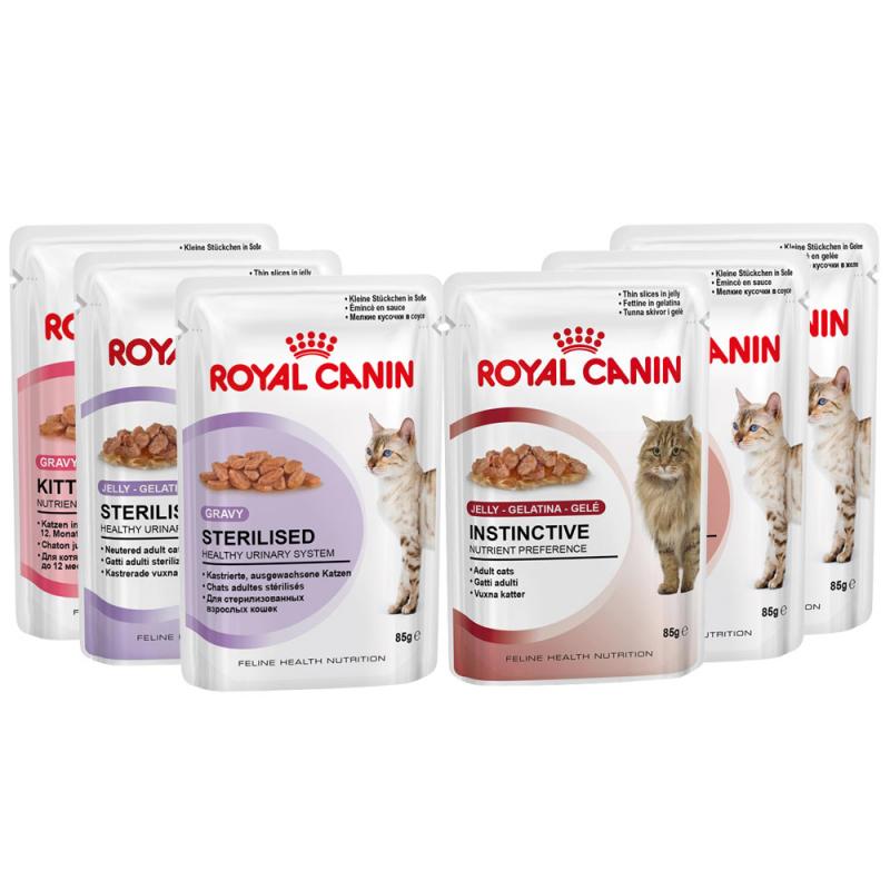 Katzenfutter: Royal Canin Feline Health Nutrition Sparpaket | 60 x 85 g für 39,99€ inkl Versand und -10€ Cashback