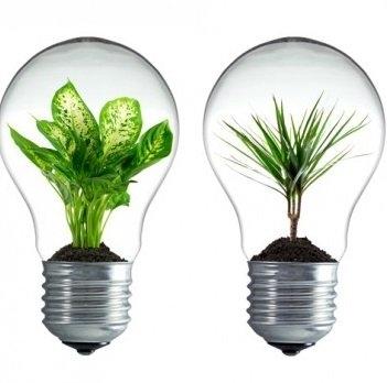 [lokal Jüchen] Alte Glühlampen kostenlos in sparsame LEDs umtauschen