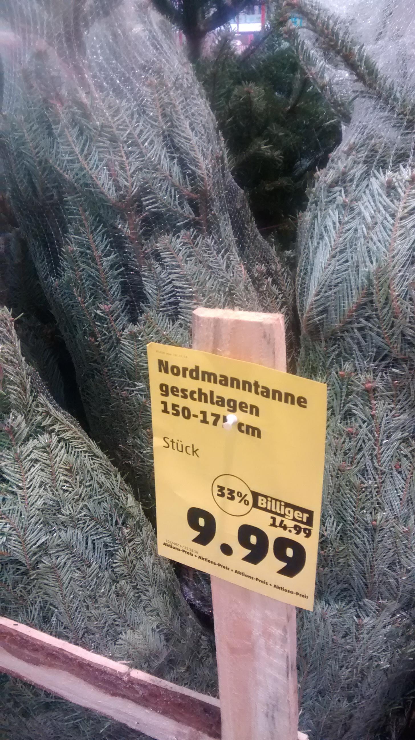 PENNY Weihnachtsbaum Nordmanntanne 150-175cm