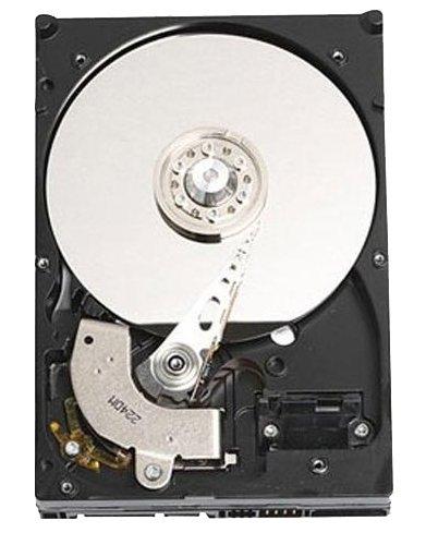 [Preisfehler?] DELL 400-ACRS Festplatte HDD 1TB