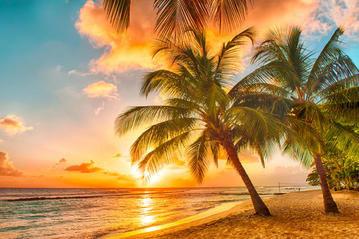 (LTURfly / Eurowings) Barbados oder Jamaika Hin- & Rückflüge mit Gepäck etc. (einige Termin, u.a. Rosenmontag back in Köln!)