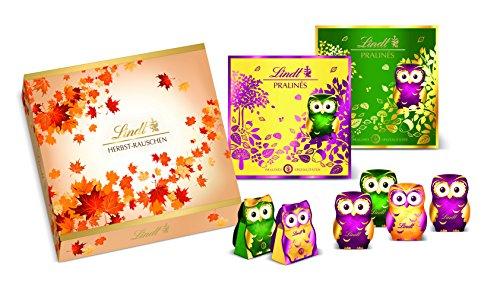 Lindt & Sprüngli Herbstrauschen, 1er Pack (1 x 598 g) Schokolade bei Amazon nur noch 11,63€