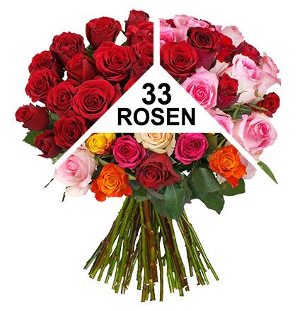 ROSENÜBERRASCHUNG - 33 Rosen a' 50cm - Blume Ideal