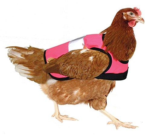 Warnweste für Hühner - Verschiedene Farben