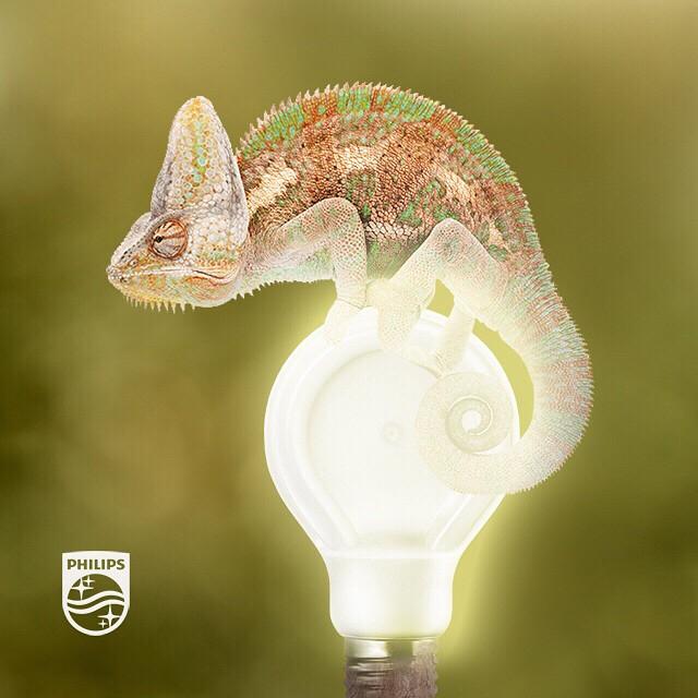 6er Pack Philips E27 dimmbare LED-Lampe 6 W (ersetzt 40 Watt)