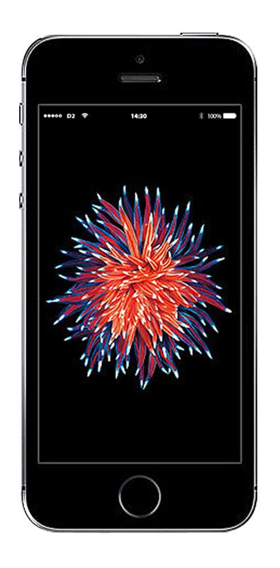 TARIFtastisch: 50 Minuten/SMS und 1 GB für 11,99€ mtl. mit Apple iPhone SE 16GB  für 69€ Zuzahlung