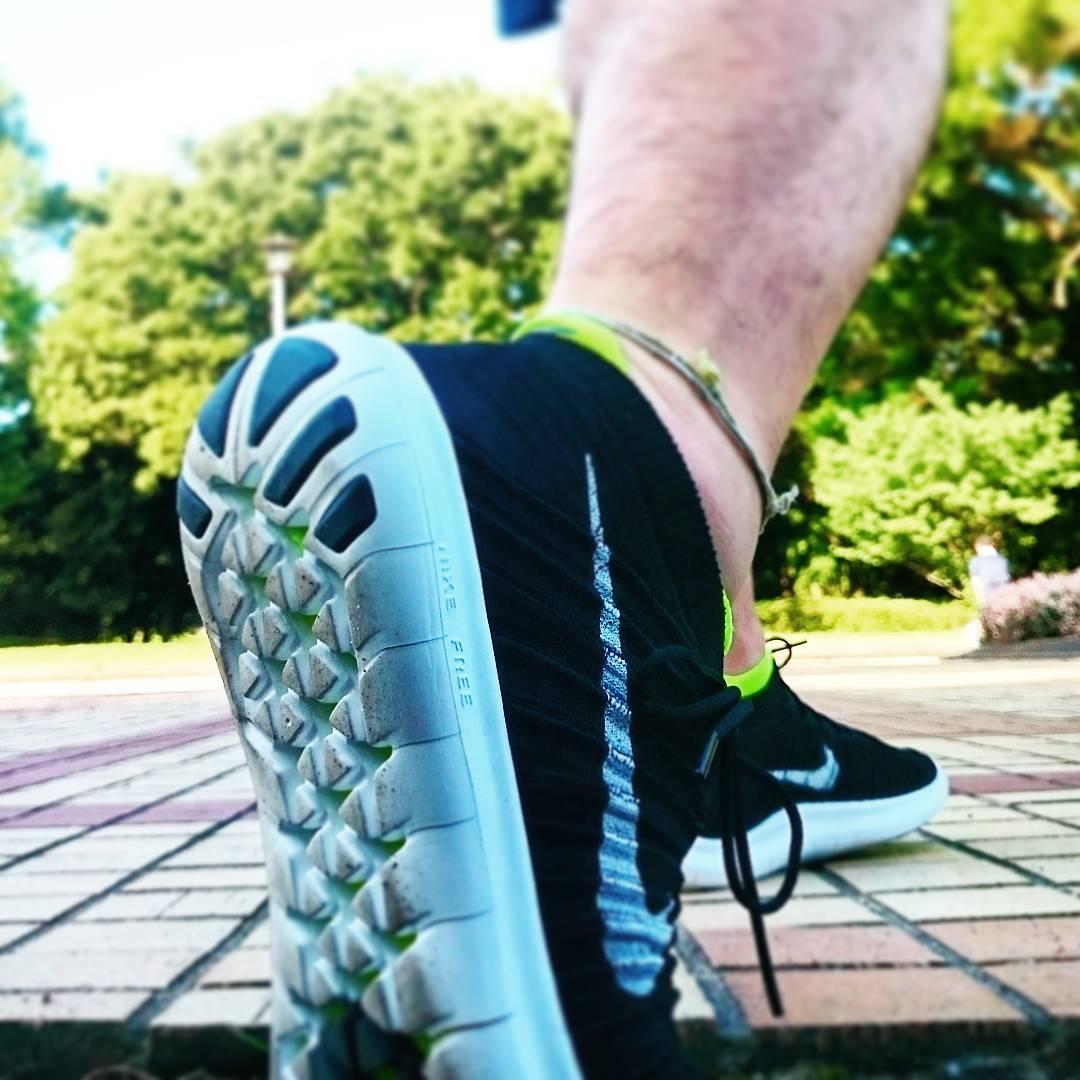 Nike Free RN Motion Flyknit - verschiedene Farben für Damen und Herren