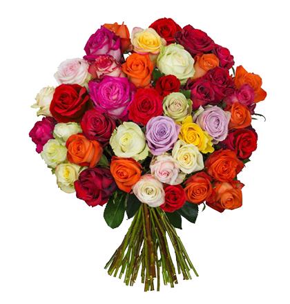 Rosenstrauß: 42 bunte Rosen   für 18,99€