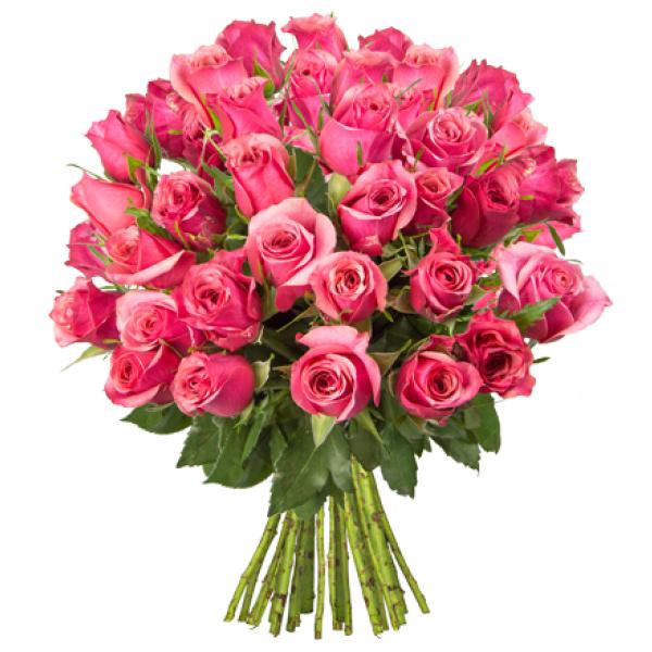 14% Rabatt bei Blume Ideal - jetzt zum Muttertag vorbestellen