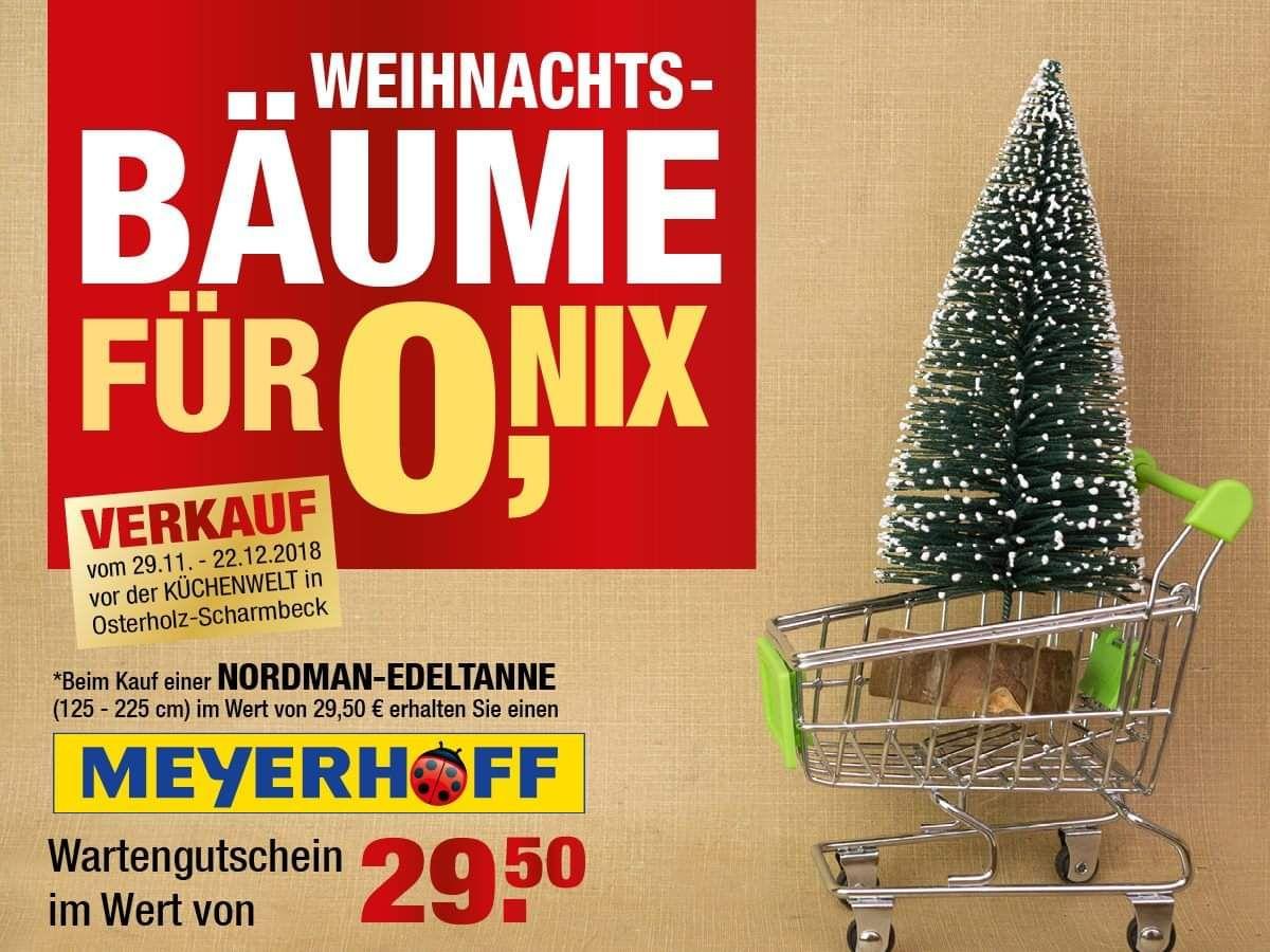 Meyerhoff Ohz Tannenbaum Kaufen Und Wert Als Gutschein Erhalten