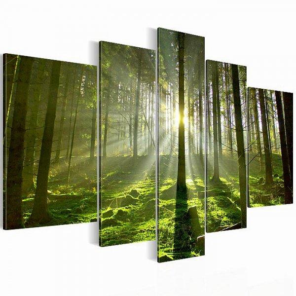 Amazon diverse wandbilder von prestigeart f r 17 80 inkl vsk - Amazon wandbilder ...