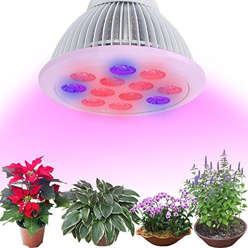 12watt led leuchtmittel zur pflanzenzucht mit speziellem. Black Bedroom Furniture Sets. Home Design Ideas